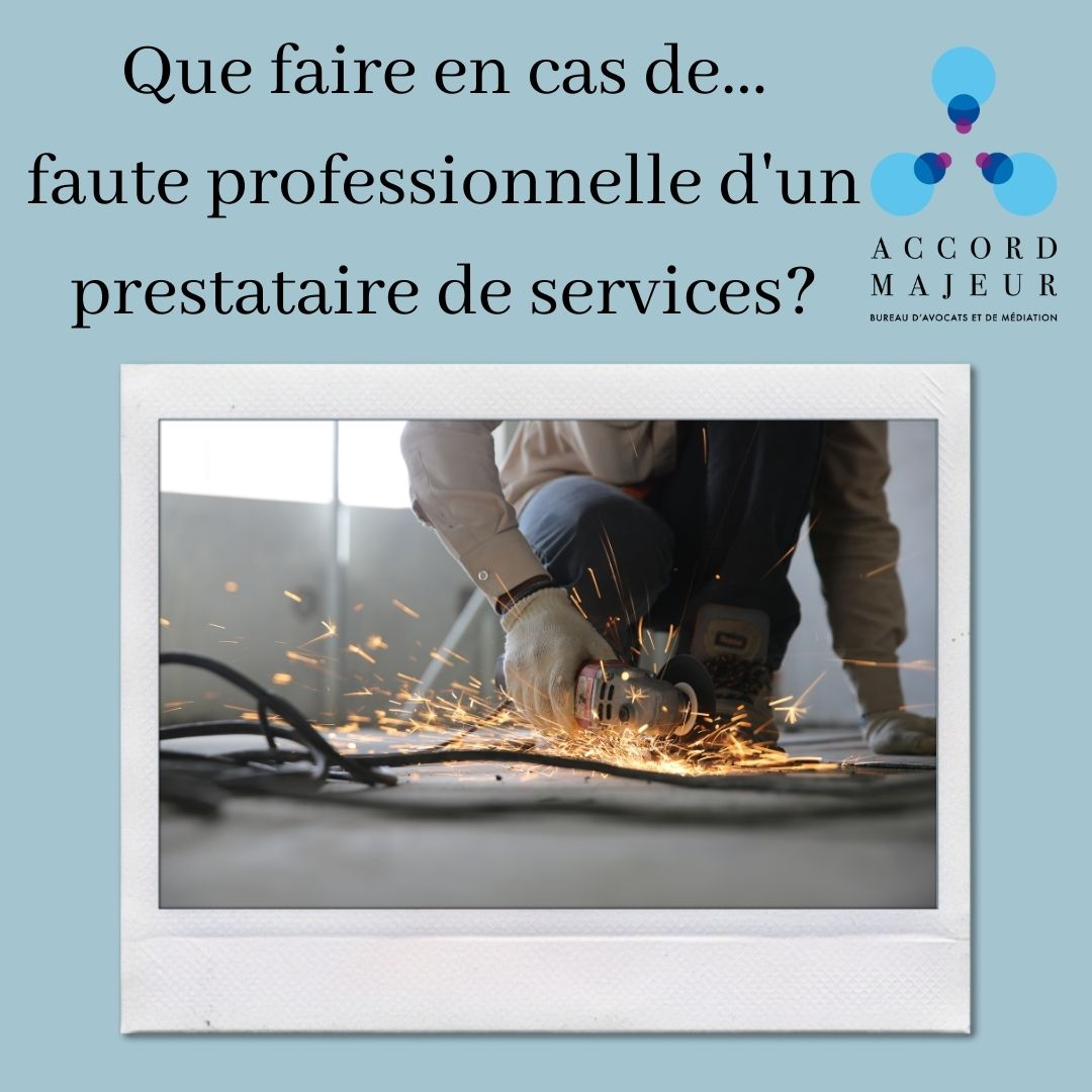 COMMENT REAGIR EN CAS DE FAUTE PROFESSIONNELLE D'UN PRESTATAIRE DE SERVICES?